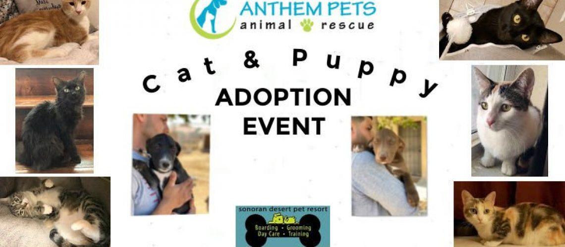 Adoption Collage Mar 27