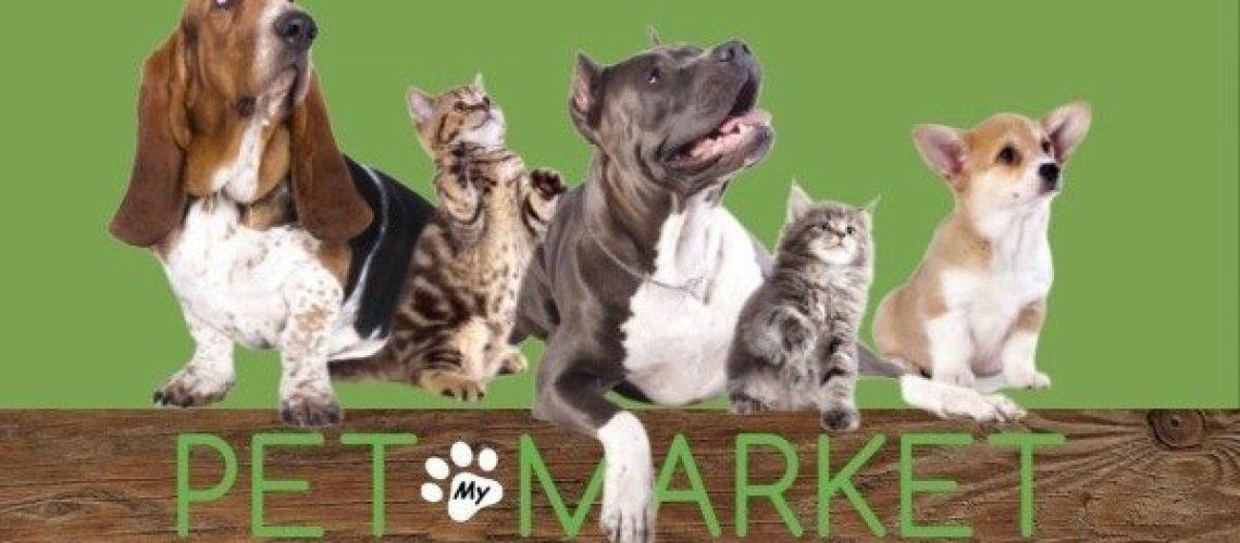 Pet Market Feb 2020