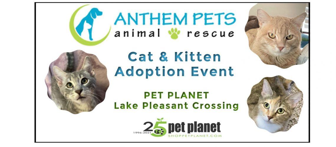Pet Planet Sept Collage