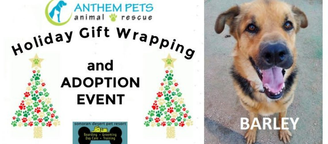 SDPR Gift Wrapping Banner Dec 19(1)