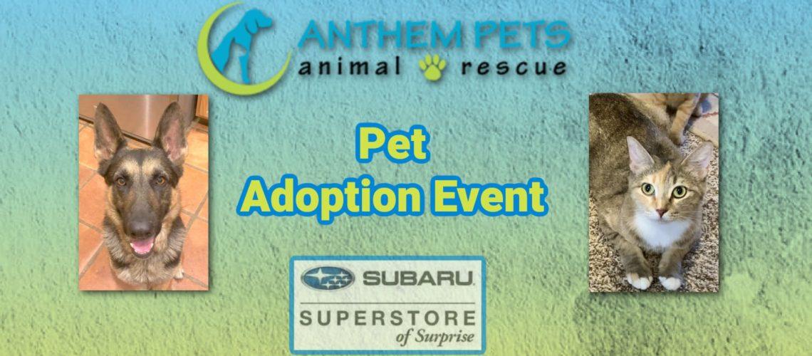 Subaru Adoption October